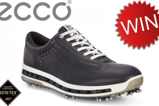 Win ECCO Cool Shoes
